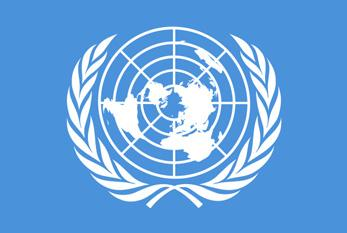 Vereinte Nationen - (Internet, Polizei)