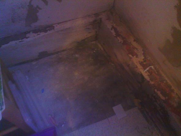 Das ist eine Ecke der Küche - (Mietrecht, Kündigungsfrist, Schimmel)