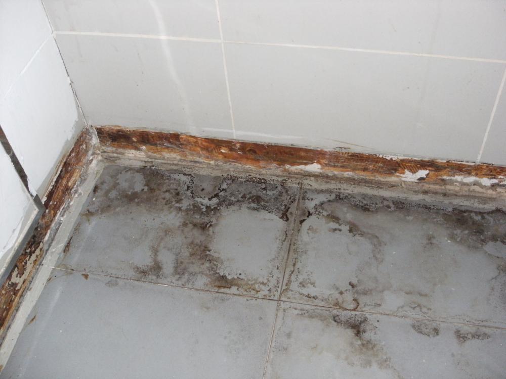 Fußboden Fliesen Bad Reinigen ~ Pvc fliesen selbstklebend fürs bad haus