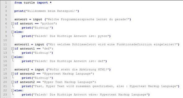 Notepad ++ Text - (Computer, PC, programmieren)