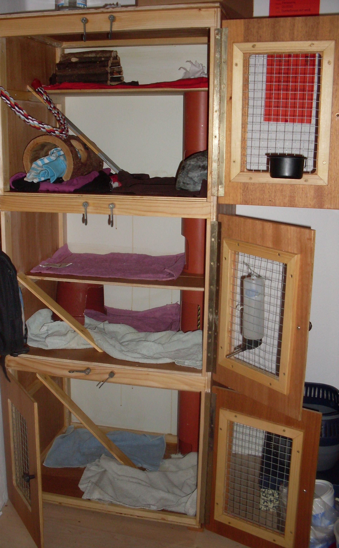 sch n ratten spielzeug selber basteln tierspielzeug. Black Bedroom Furniture Sets. Home Design Ideas