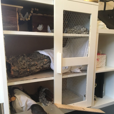 Rattenkäfig Zu Klein Tiere Ratten Käfig