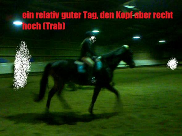 im Trab normalerweise noch etwas schlechter - (Training, reiten, junges Pferd)