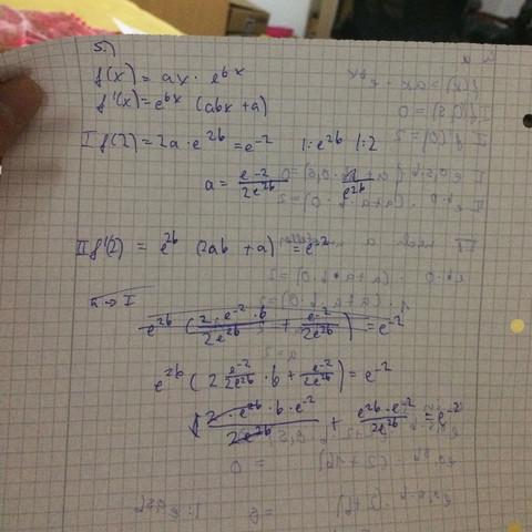 Mein ansatz - (Mathe, e-funktion)