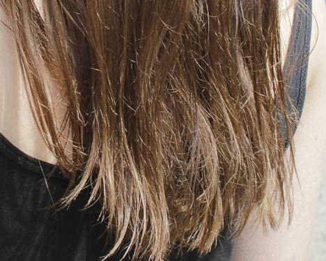 rezept f r hausmittel gegen splissige haare friseur haarpflege braun. Black Bedroom Furniture Sets. Home Design Ideas