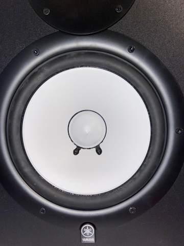 Riss im Lautsprechermembran?