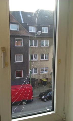 Riss in der fensterscheibe ursache wohnung wohnen schaden - Fenster beschlagen von innen wohnung ...