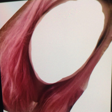 rosa haare zu grau färben (Haarfarbe, jugendlich, blondieren)