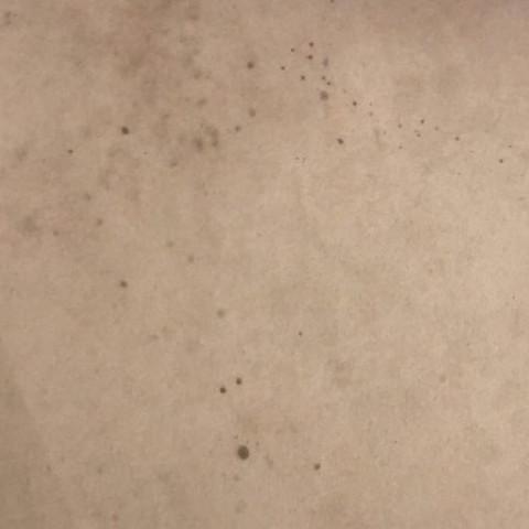 rotweinflecken aus teppich entfernen reinigung flecken wein. Black Bedroom Furniture Sets. Home Design Ideas