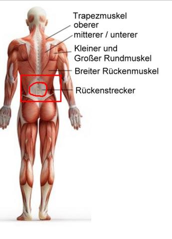 Wovon die linke Seite des Kopfes und der Hals weh tut
