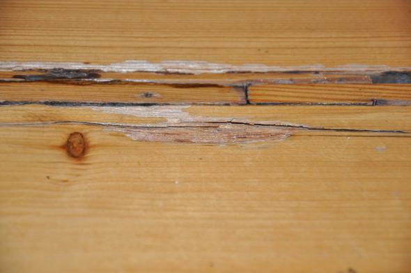 Fußboden Vermietersache ~ Sanierung des dielenfußbodens beim vermieter durchsetzen dielen