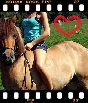 (: - (Pferde, Reiten, ohne sattel)