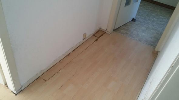 katzenurin auf teppich entfernen finest teppiche sammeln schnell schmutz und sollten deswegen. Black Bedroom Furniture Sets. Home Design Ideas