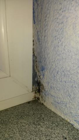 Schimmelbefall im Schlafzimmer - (Schimmel, Fenster, Schlafzimmer)