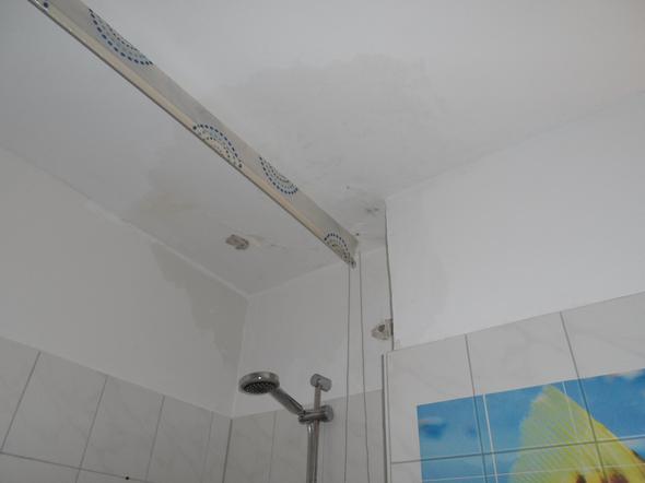 schimmel durch wasserschaden was nun mietminderung. Black Bedroom Furniture Sets. Home Design Ideas