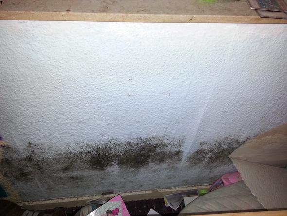 schimmel im schlafzimmer entstanden was nun tun hilft mir bitte wohnung wohnen entfernen. Black Bedroom Furniture Sets. Home Design Ideas
