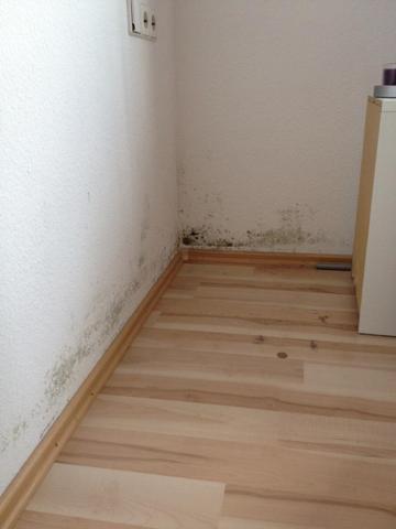 schimmel im schlafzimmer beseitigen extrahierger t f r polsterm bel. Black Bedroom Furniture Sets. Home Design Ideas