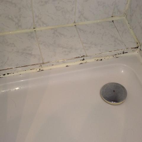 schimmel in der dusche wie schlimm ist es gesundheitsschaedlich. Black Bedroom Furniture Sets. Home Design Ideas
