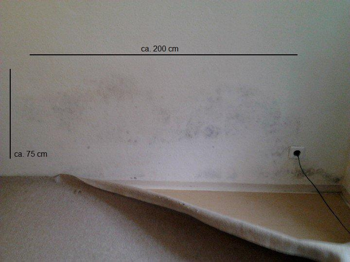 schimmel in der wohnug schreiben an vermieter. Black Bedroom Furniture Sets. Home Design Ideas