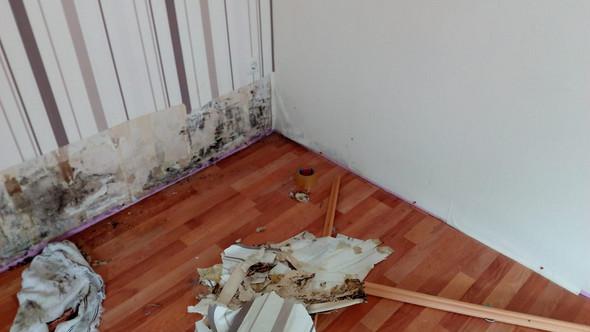 schimmel in der wohnung l ften oder wasserrohrbruch. Black Bedroom Furniture Sets. Home Design Ideas