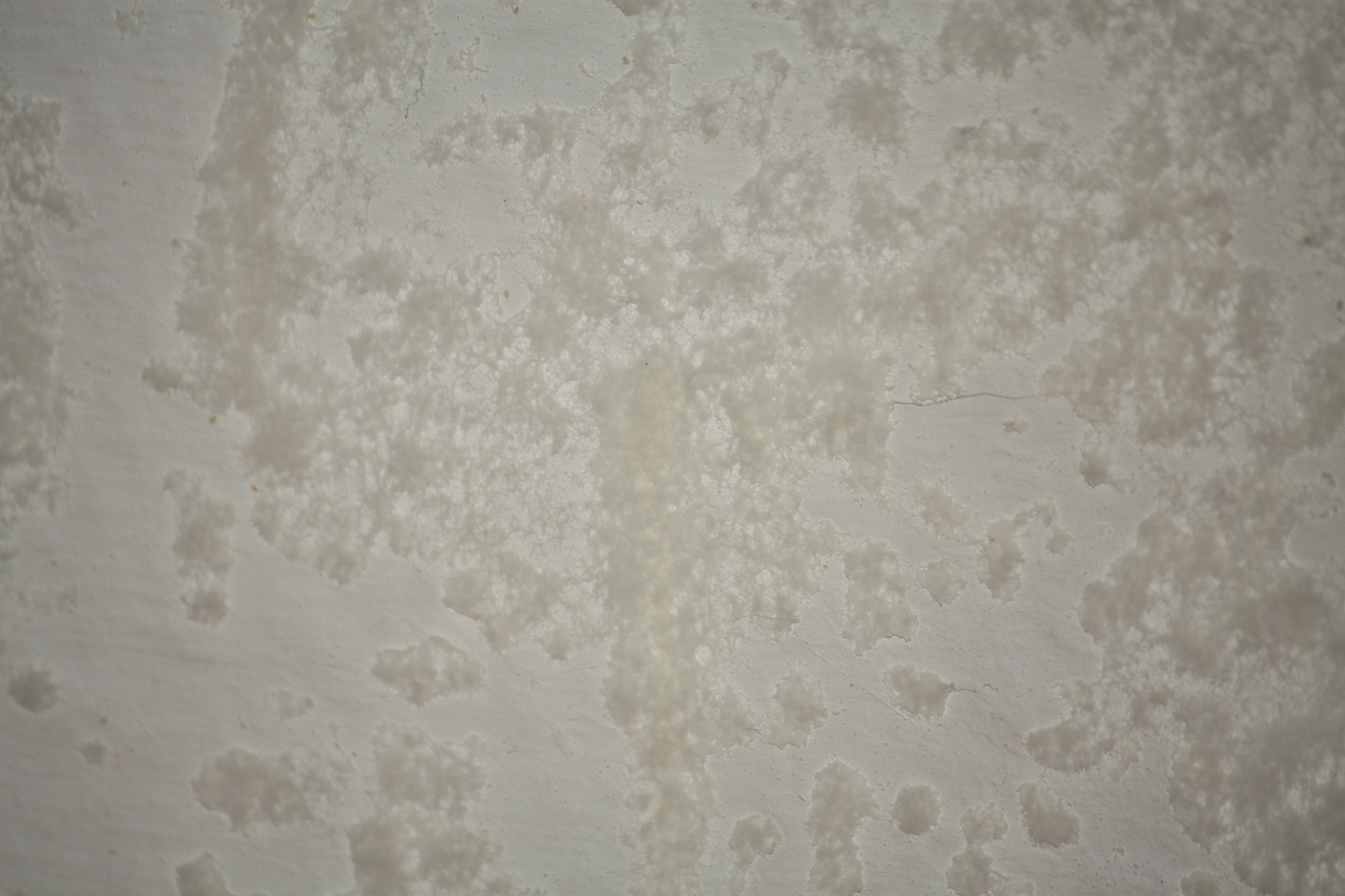 schimmel oder salzausbl hung im wohnzimmer wohnung salz sanieren. Black Bedroom Furniture Sets. Home Design Ideas