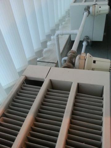 8a Heizkörper - (Wohnung, Schimmel, Fenster)