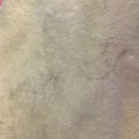 schimmelflecken oder verf rbungen waschmaschine flecken schimmel. Black Bedroom Furniture Sets. Home Design Ideas