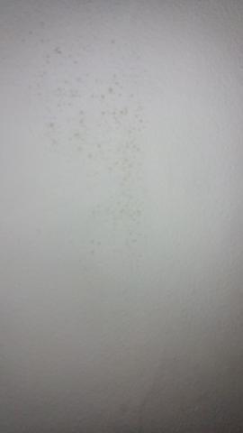 schimmel habe im treppenhaus komische hellbraun beige flecken es handelt sich um eine au enwand. Black Bedroom Furniture Sets. Home Design Ideas