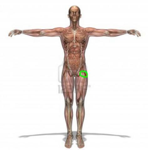 Stelle (siehe grüne Markierung) - (Gesundheit, Sport, Schmerzen)