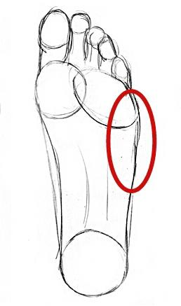 Fuß (Bereich rot markiert?)  - (Schmerzen, Füße)