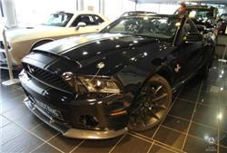 Shelby - (Auto, Mustang)