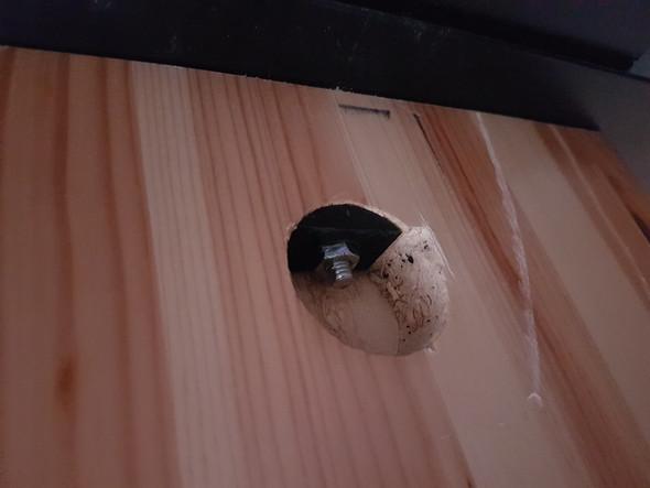 schraube entfernen handwerk schrauben schreinerei. Black Bedroom Furniture Sets. Home Design Ideas