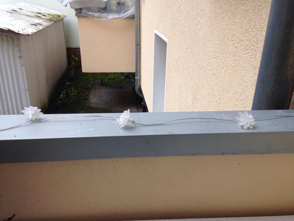 mein balkon - (Katzen, Kater, Balkon)