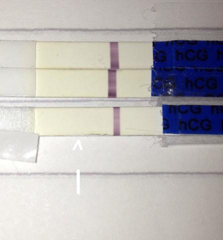 Negativ falsch ss test ES+13/14 SSW