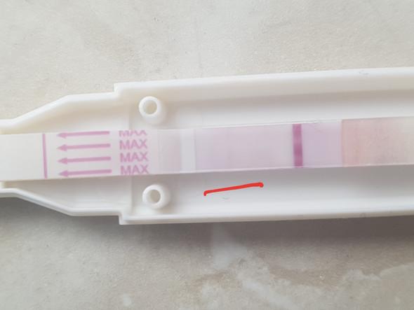 schwangerschaftstest positiv aber blutung