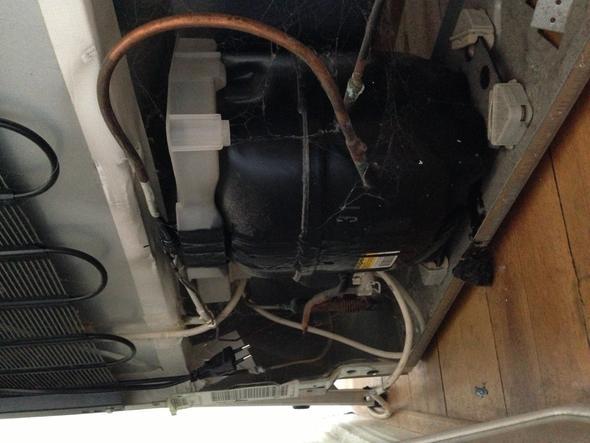 Bomann Kühlschrank Woher : Schwarze flüssigkeit kommt aus kühlschrank küche elektrogeräte