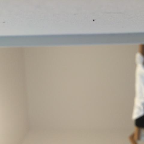 Schwarze Punkte An Wand Und Ein Rotes Insekt Insekten Schädlinge