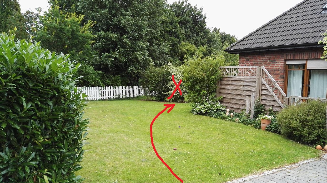 See Container Im Garten Bewegen Aber Wie Bauen Heimwerken