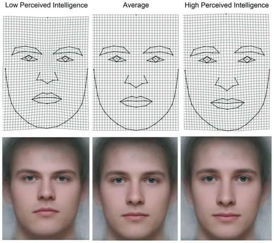 Sehen intelligent Menschen auch intelligent aus?