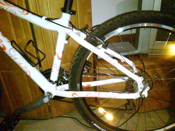 mein Fahrrad sucht einen Seitetständer - (Fahrrad, Seitenständer)