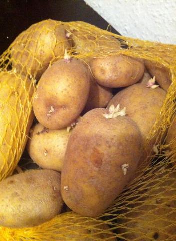 Kartoffel - (essen, Lebensmittel, Nahrung)