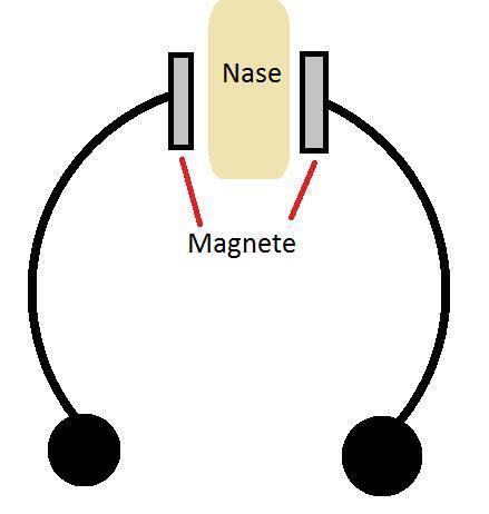 septum mit magneten wo kann man die kaufen oder bestellen. Black Bedroom Furniture Sets. Home Design Ideas
