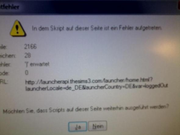 nahaufnahme des fehlers - (Sims 3, Skriptfehler)