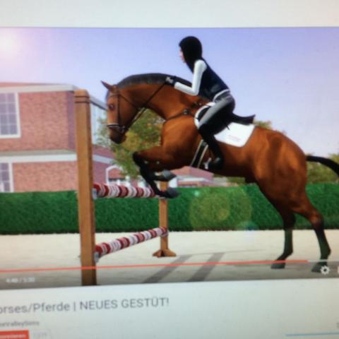 trensen und zubehör - (Sims3, Die Sims 3, sims3 einfach tierisch)