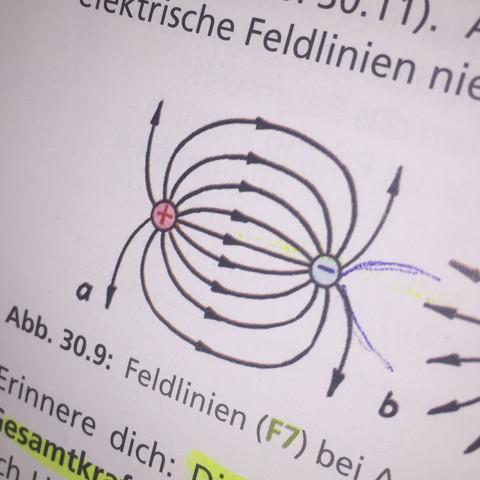 Hierbj - (Schule, Mathe, Leben)