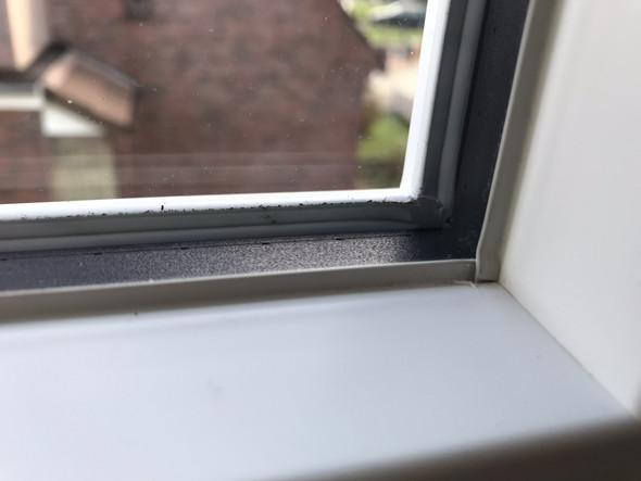 - (Fenster, Handwerker, Tischler)