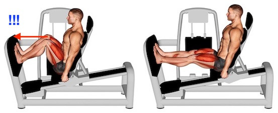 - (Sport, Fitness, Muskeln)