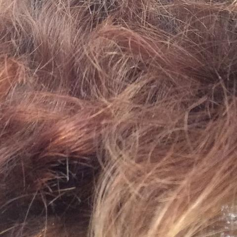 Haare kaputt strohig