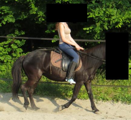 Sitz beim Reiten  - (Pferde, Reiten, sitzen)