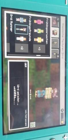 Skin ändern Minecraft (Nintendo Switch)?